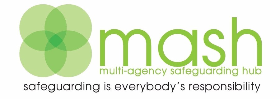 Mash Logo, Safeguarding is everybosy's repson